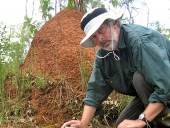 Dr Don with termite colony