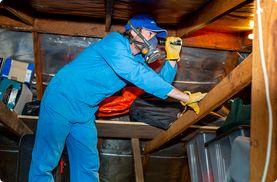 Termite Treatments