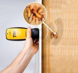 Melbourne Termite Inspection ALT9