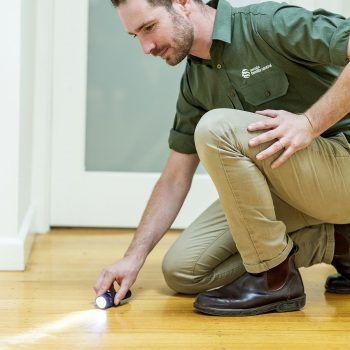 Cost Termite Inspection Melbourne ALT3