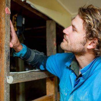 Termite inspections melbourne